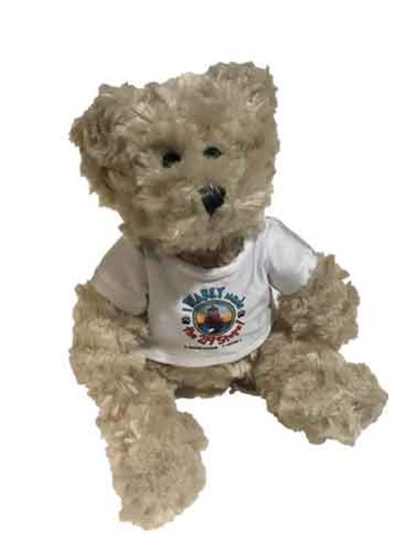 I Bear-ly Climbed Teddy,PL-999-002